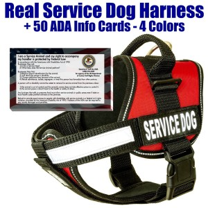 BarkOutfitters Service Dog Vest Harness