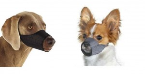 Quick Fit Dog Muzzle with Adjustable Straps