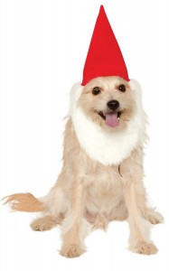 Garden Gnome Hat with Beard