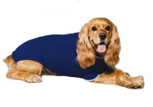 10. Fashion Pet Classic Cable Sweater