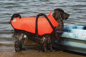 10. Premier Fido Float Dog Lifejacket