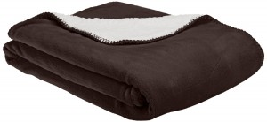 2. American Kennel Club Blanket