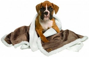 3. Animal Planet Sherpa Blanket