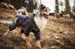 5. Hurtta Slush Combat Dog Raincoat