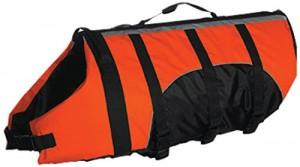 6. An Amazing Top 10 Best Dog Lifejacket, the Aquatic Dog Lifejacket