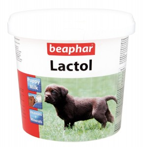 Best Fat Supplement For Dogs