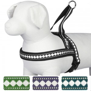 Blueberry Pet Harnesses