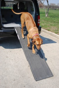 Dog Gear Free Standing Pet Ramp