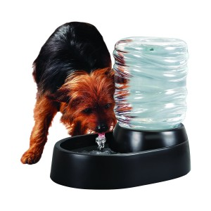 Electronic Indoor Dog Fountain