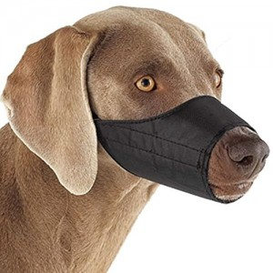 Guardian Gear Lined Nylon Dog Muzzle