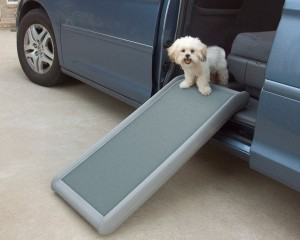 Half-sized Dog Ramp