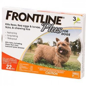Can You Put Frontline For Cats On A Small Dog