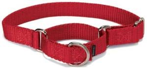 PetSafe Premier Pet Collar