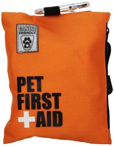Pocket-friendly First Aid Kit