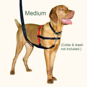 The Company of Animals Halti Dog Harness