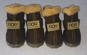 Australia Antiskid Dog Sneakers
