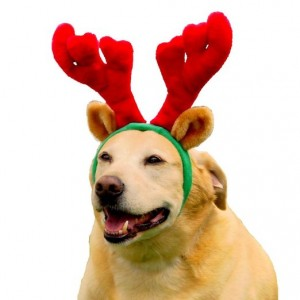 Outward Hound Holiday Antlers