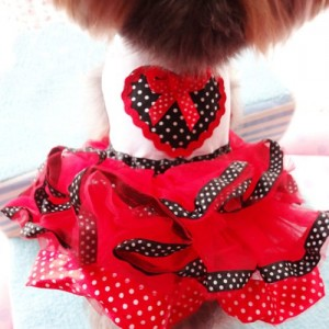 PanDaDa Red and White Love Tutu Dress