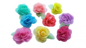 Pet Show Flower Hair Clips