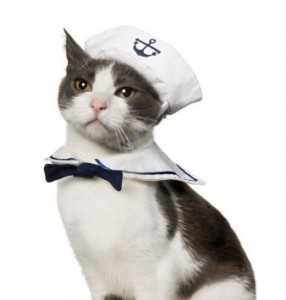 Sailor Hat with Navy Collar